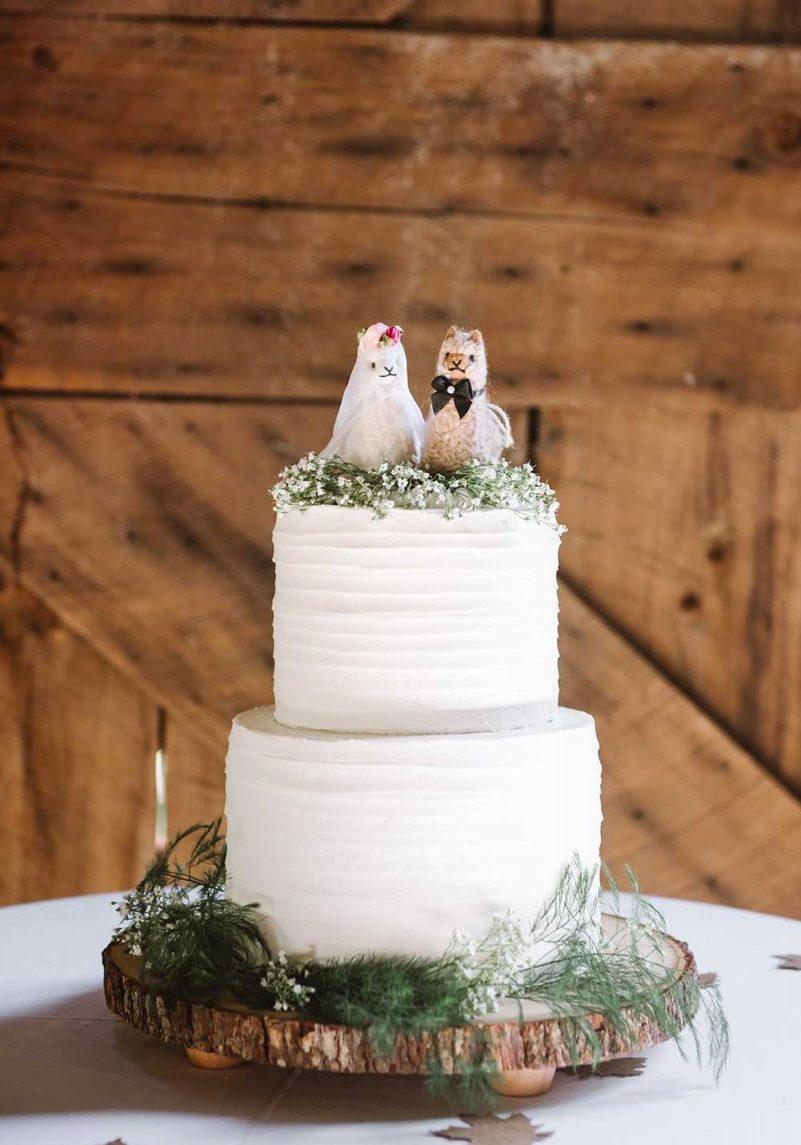 gourmet_cake_alpaca